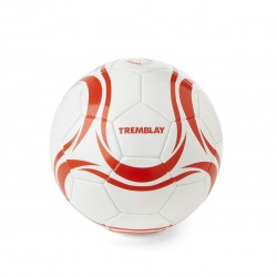 BALLON FOOTBALL 1ER PRIX