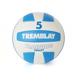 BALLON TRAINING VOLLEY TAILLE 5
